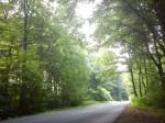Mezi lesy