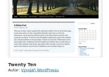Základní info o šabloně Twenty Ten